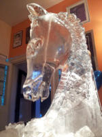 Horse Head Vodka Luge