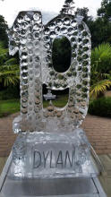 Number 19 Ice Sculpture