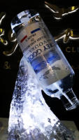 GREY GOOSE VODKA LUGE